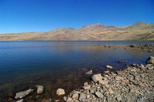 Kari Lake, Armenia